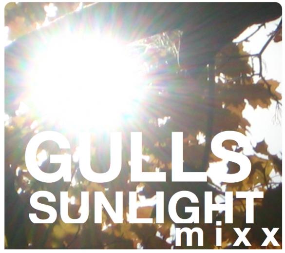 Gulls Sunlight Mix cover